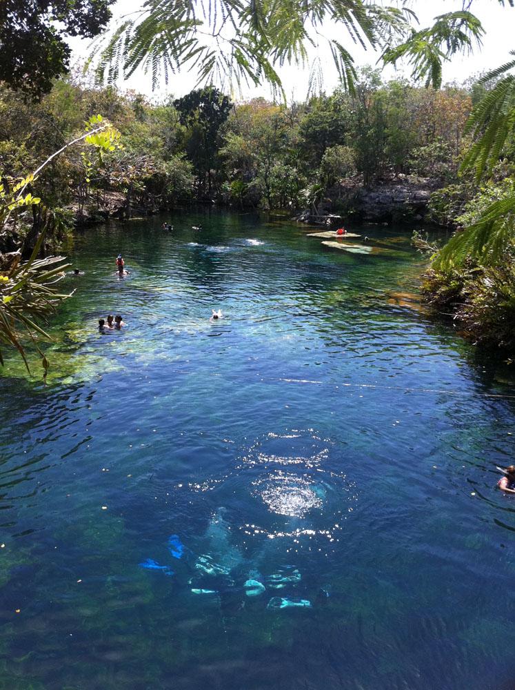 Cenote jardin del eden riviera maya for Jardin del eden
