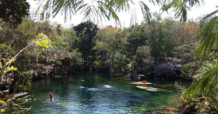 A canuck in mexico cenote jardin del eden riviera maya for Jardin del eden