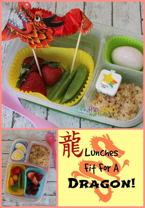 Chinese Dragon Bento