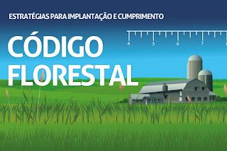 Conferência: Estratégias para Implantação e Cumprimento do Código Florestal