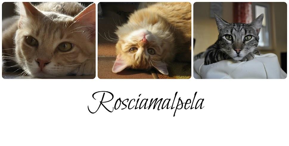 Rosciamalpela