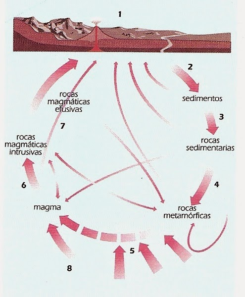 Clasificacion de las rocas sedimentarias