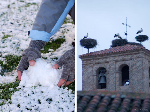 nieve y cigüeñas