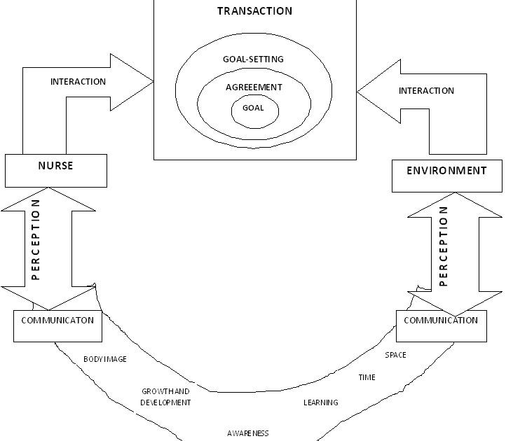 examples of imogene king theory