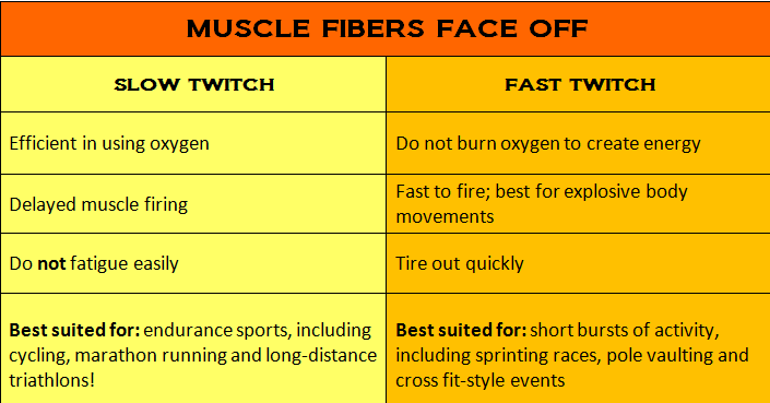 simple muscle twitch observations Learn about muscle twitch on healthgradescom, including information on symptoms, causes and treatments.