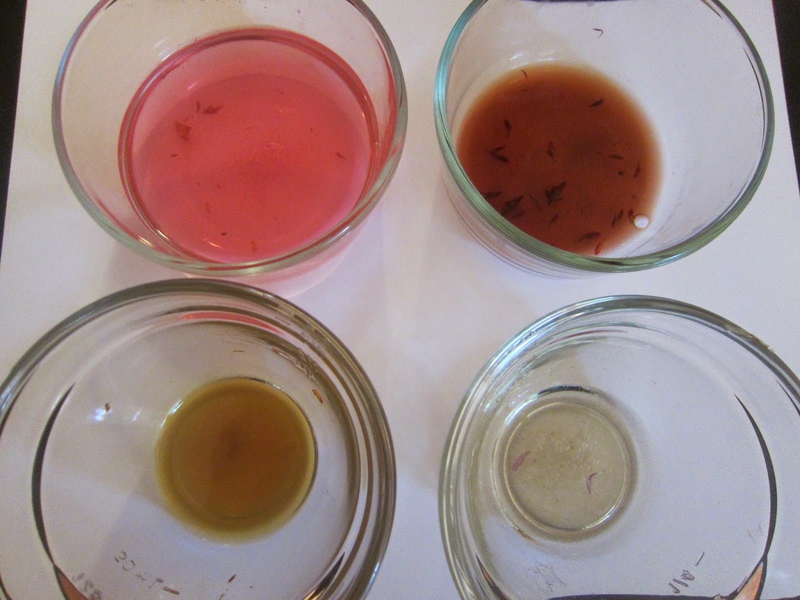 littleBLASTblog: Earth Day: Make Your Own Water Color Paint