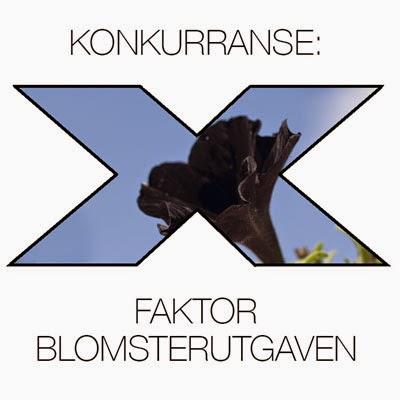 http://moseplassen.com/2015/03/x-faktor-blomster-gronn-og-svart/#more-38470
