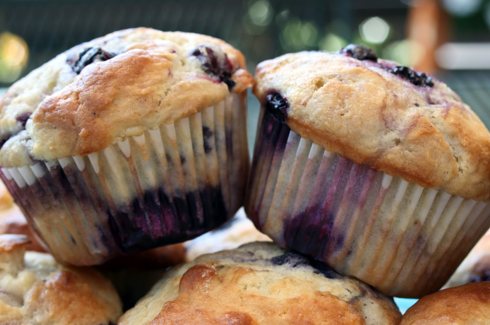 Food and Garden Dailies: Perfect Blueberry Muffins