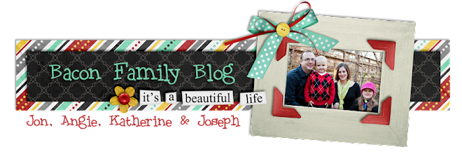 The Bacon Family Blog