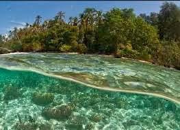 Obyek Wisata Kuliner Bali Terbaru Unik Lengkap