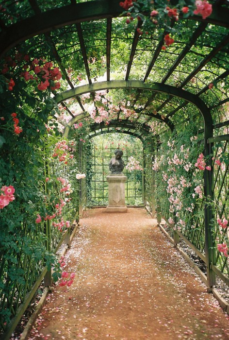 garden inspiration earth wallpaper