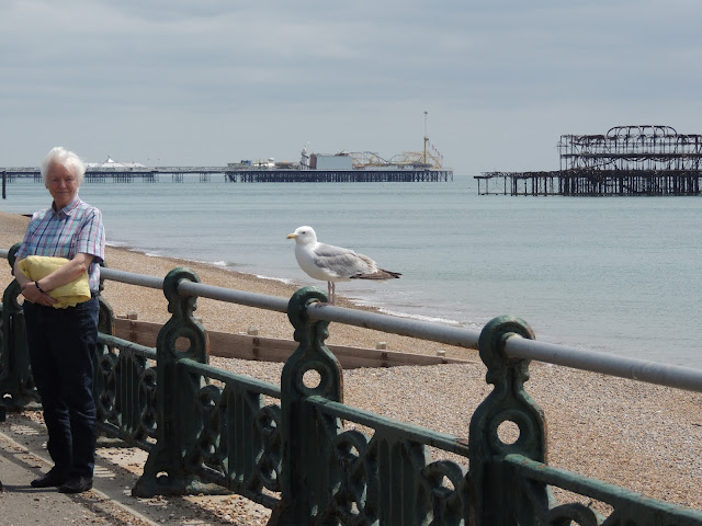 Camilla Jane || Travel - Brighton, East Sussex, England