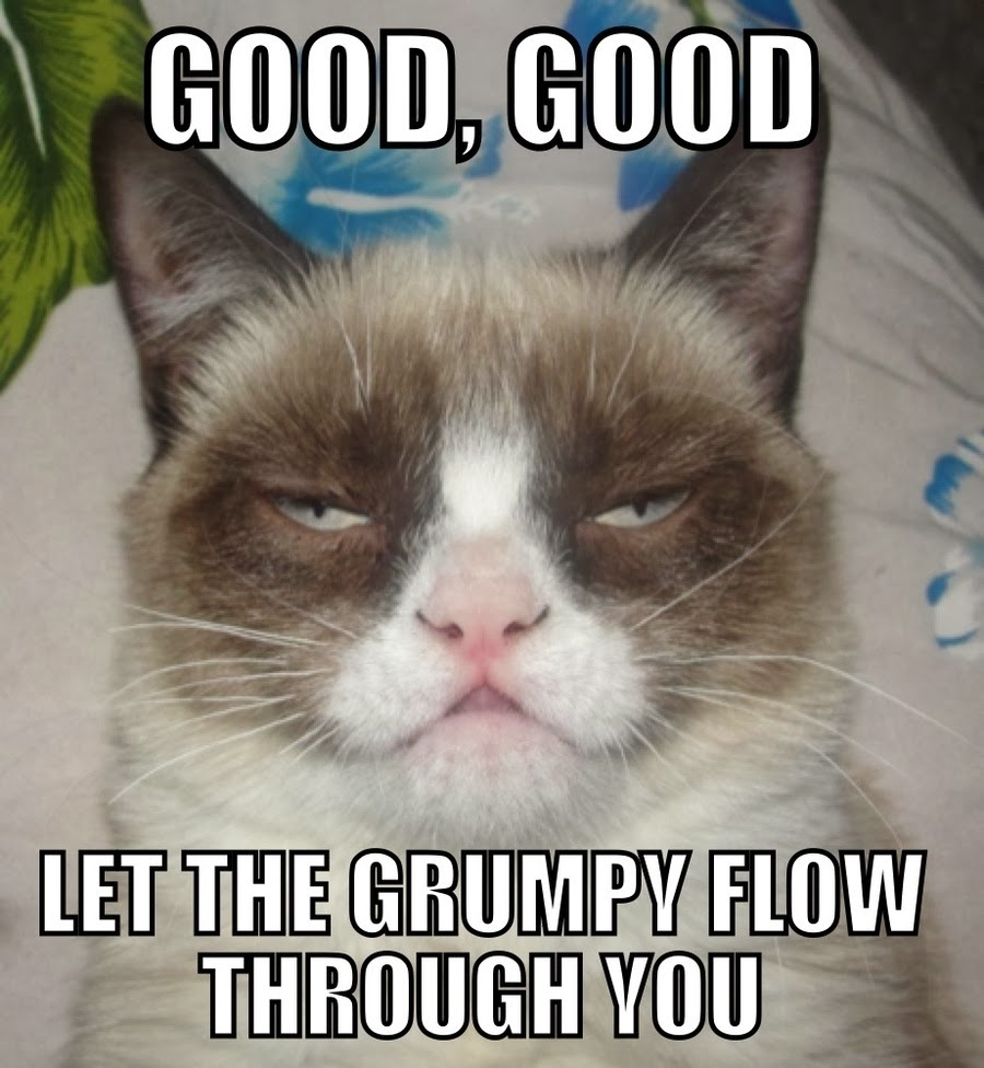 caterville grumpy cat memes. Black Bedroom Furniture Sets. Home Design Ideas