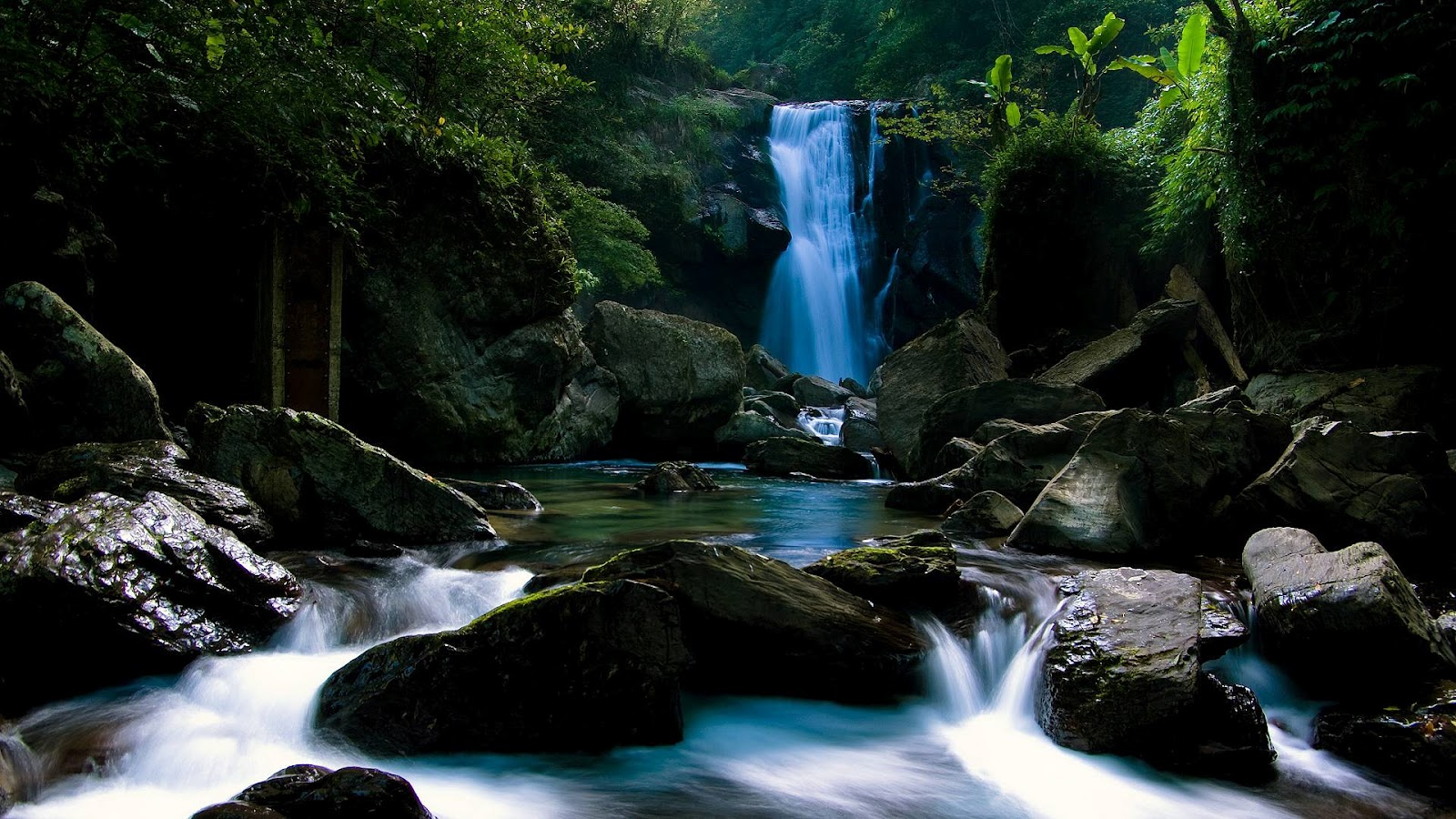 http://1.bp.blogspot.com/-kpyd1DHzy9w/T6E5IsiSNrI/AAAAAAAAAFg/BZqPL1bTbyg/s1600/Nature_Full_HD_Wallpaper_1920_1080.jpg