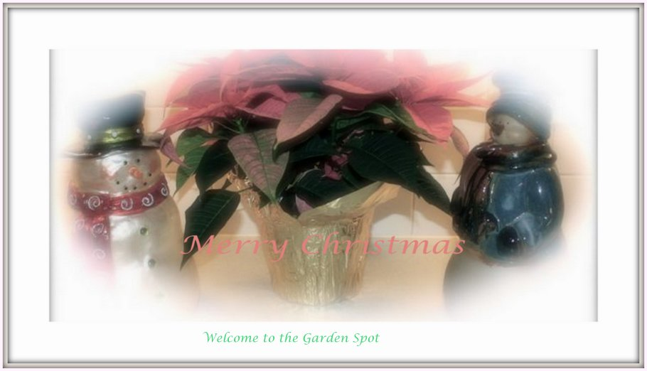 Welcome to the Garden Spot