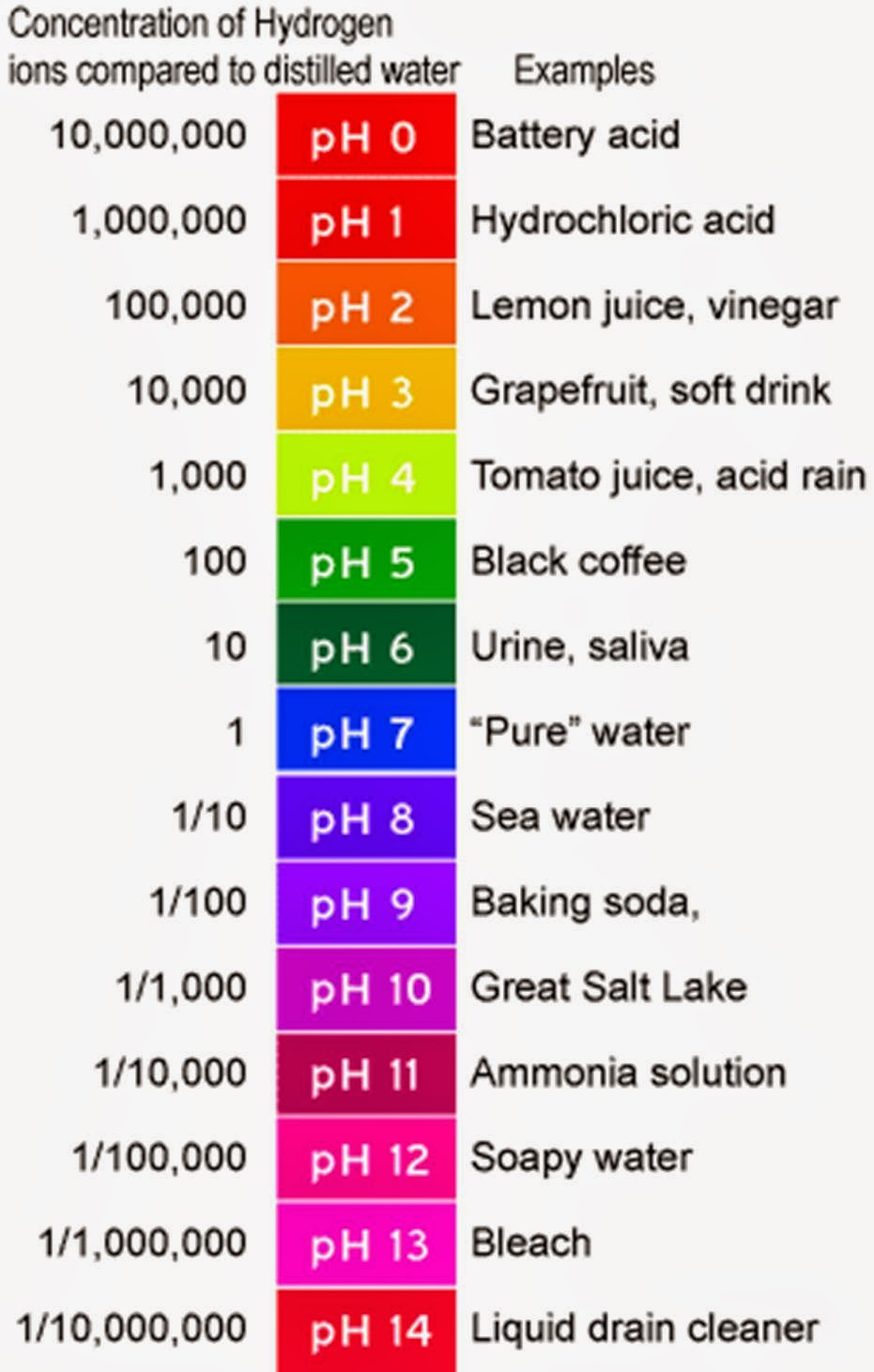 Foods To Maintain The pH Level Of Blood In Hindi