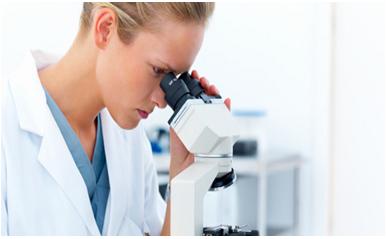 Can Blood Tests Determine Food Allergies