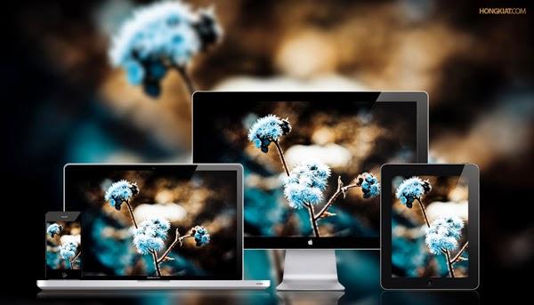 خلفية 2014 زهور زرقاء شتوية