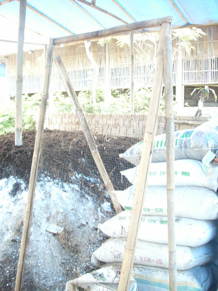 Pembuatan Pupuk Organik Dari Kotoran Sapi