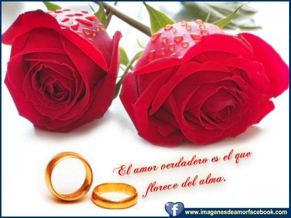 Postales para facebook amor verdadero - Imágenes Bonitas