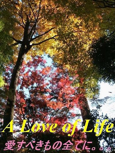 A Love of Life ...  ( 愛すべきもの全てに。。。)