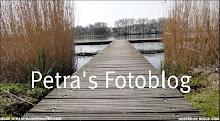 Breng ook eens een bezoek aan mijn andere blogs (klik op de foto en je komt er vanzelf)