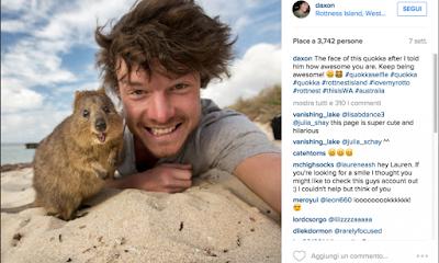 buongiornolink - Dall'Australia il re dei selfie con gli animali
