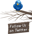 Burung Twitter di atas Ranting Pohon,twitter bird,twitter on the tree,tweet,follow us on twitter