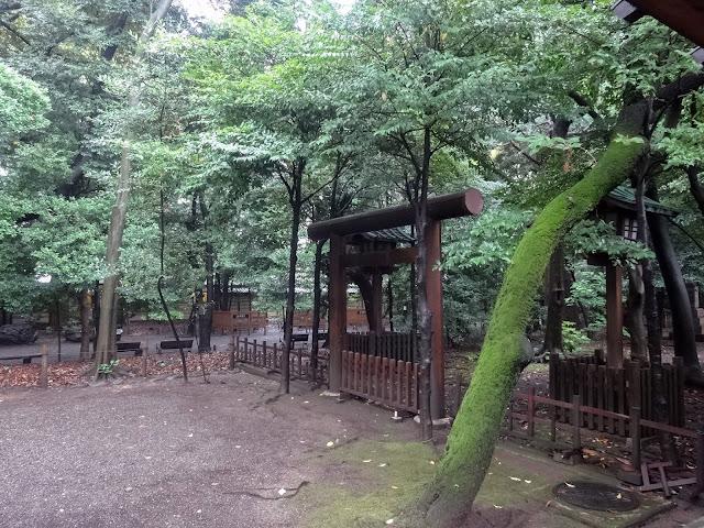 鳥居,靖国神社〈著作権フリー無料画像〉Free Stock Photos