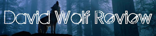 David Wolf Review