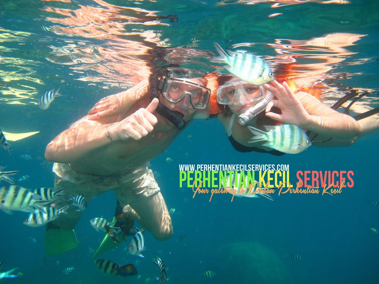 pakej snorkeling di pulau perhentian, snorkeling trip terbaik di pulau perhentian, perhentian kecil services, pulau perhentian kecil