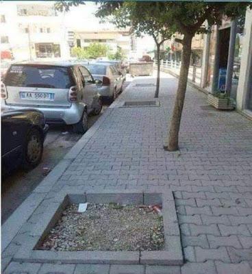 Plantation d'arbres raté sur un trottoir