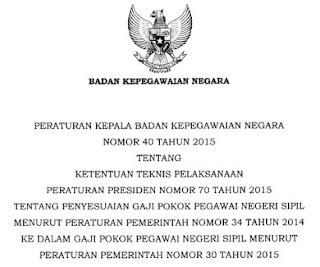 Penting... Ini Peraturan Kepala BKN Tentang Penyesuaian Gaji Pokok PNS