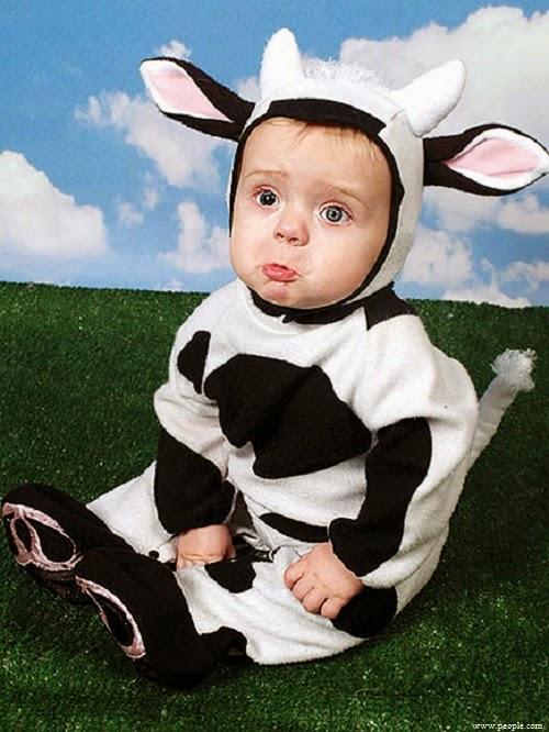 Photos bébés déguisement de halloween