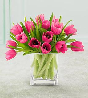 Bunga Tulip Kado Ulang Tahun Yang Berkesan