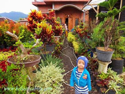 Desa Sidomulyo, Desa Bunga di Batu