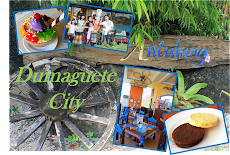 Dumaguete R and R
