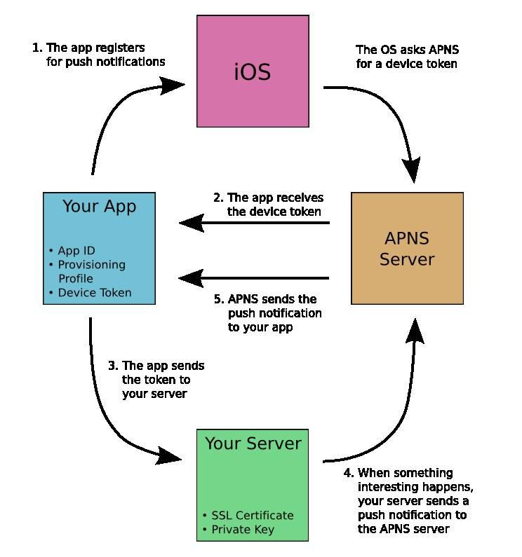 Push Notification Iphone