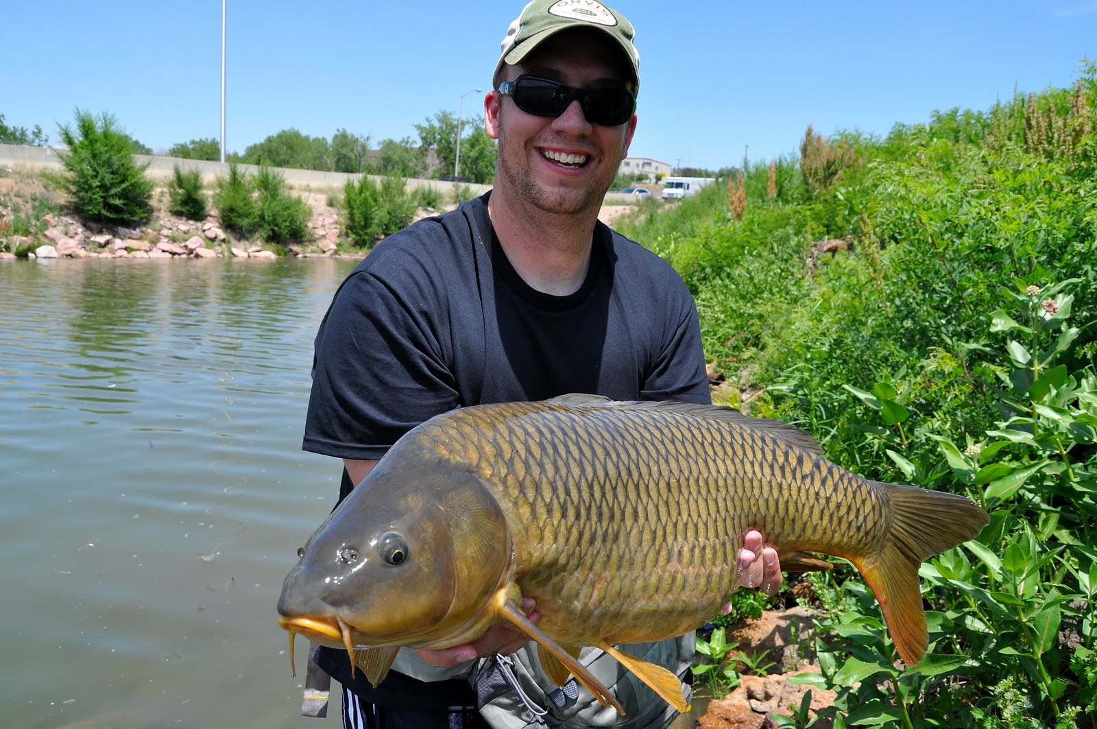 Colorado fly fishing magazine giant carp out of a local for Fishing lakes in colorado springs