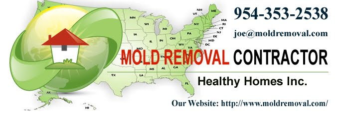 Mold Removal Springfield