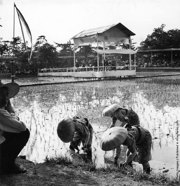 Japón en blanco y negro (1940´s-1950´s)