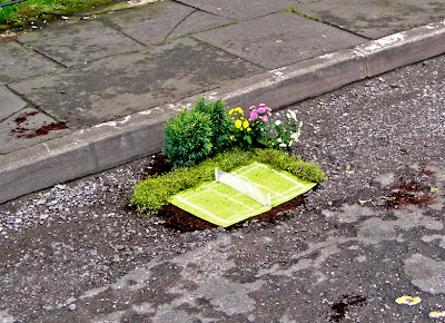 The Pothole Gardener Seen On www.coolpicturegallery.us