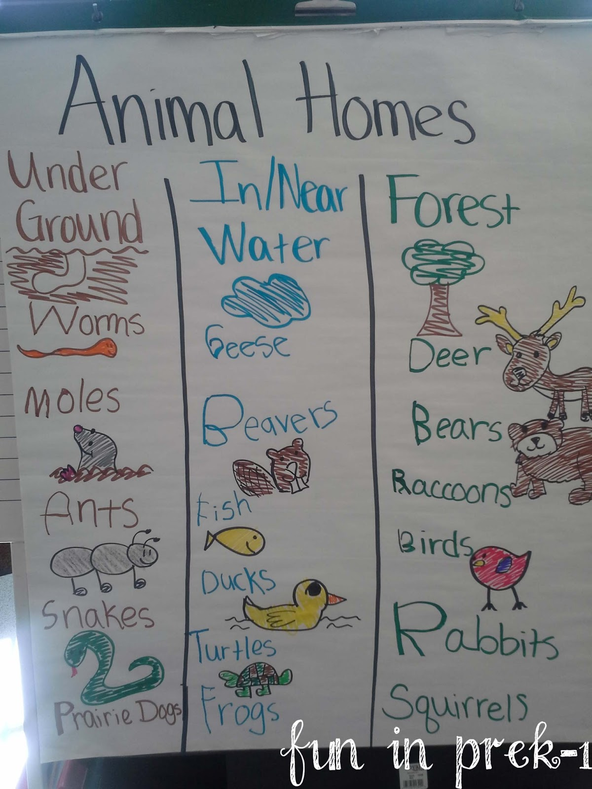 A Picture Palooza Animal Homes Life on Pond Worksheets First Grade Habitats
