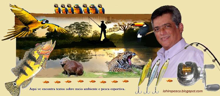 Mais Ambiental & Pesca Esportiva