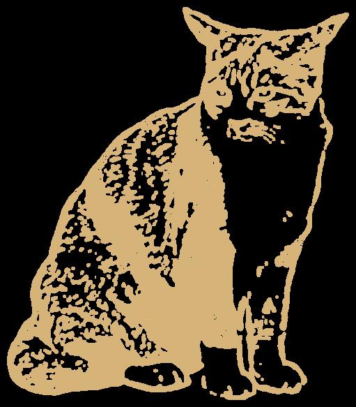 三毛猫(動物)