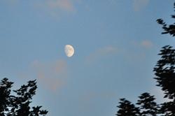 Der Mond...