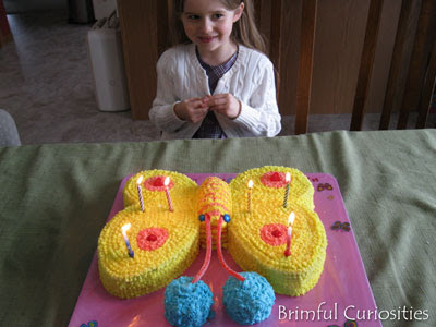 Butterfly Birthday Cake on Brimful Curiosities  Wordless Wednesday   Butterfly Birthday Cake