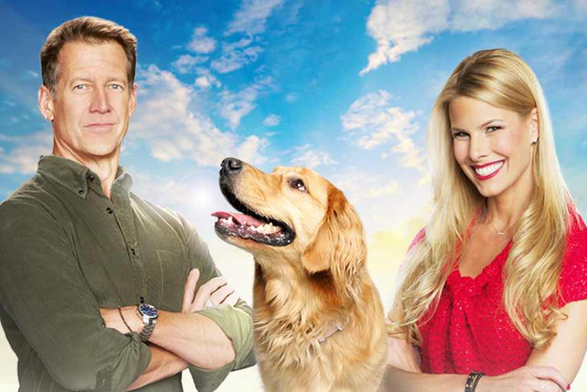 paws tonight for a hallmark channel special and an early christmas treat - Christmas Movies On Tonight