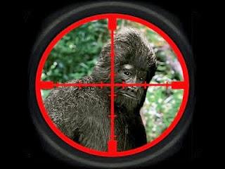 Kill vs No Kill