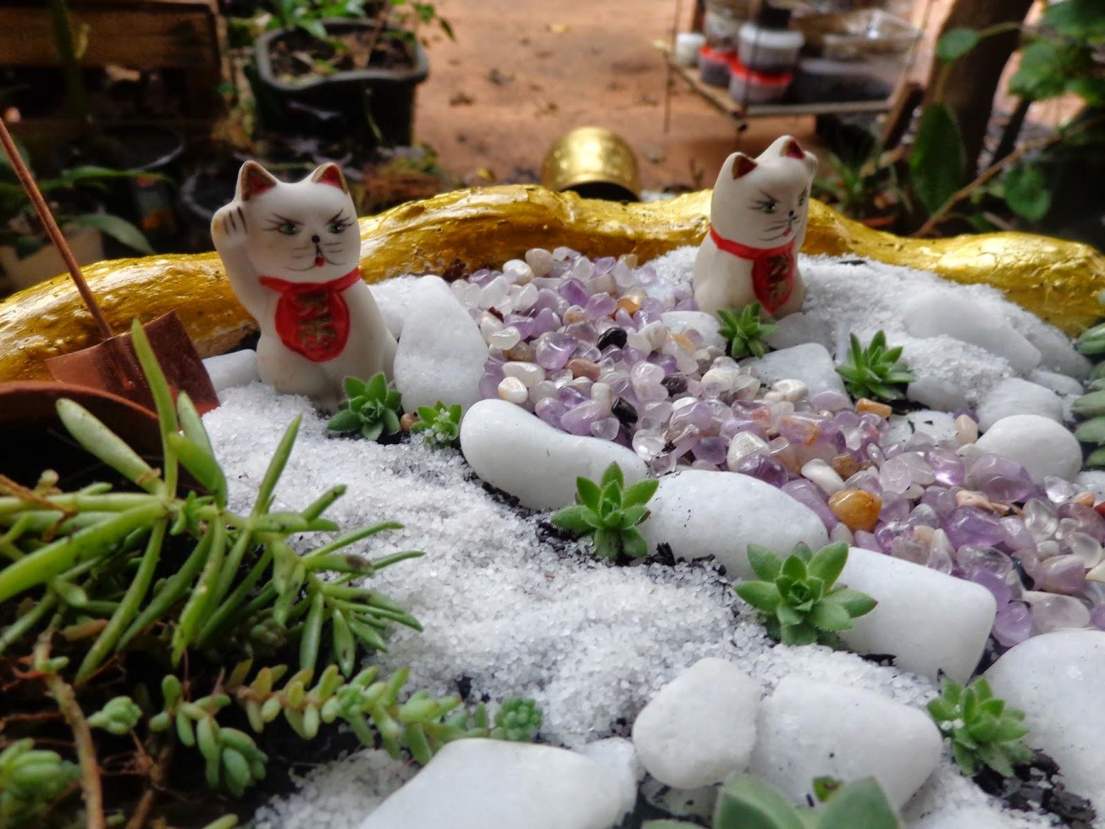 mini jardim suculentas:Mini-jardim de cactos e suculentas – Diário de uma Sementeira